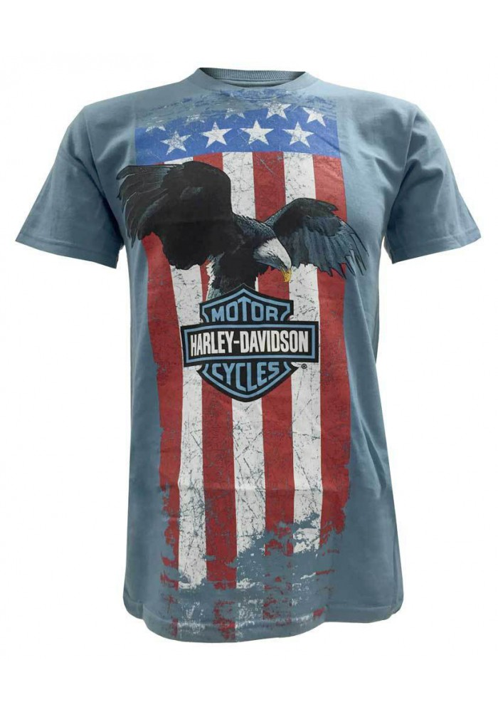 Harley Davidson Homme American Flag Stripe Manches Courtes Tee Shirt Graphique, Bleu