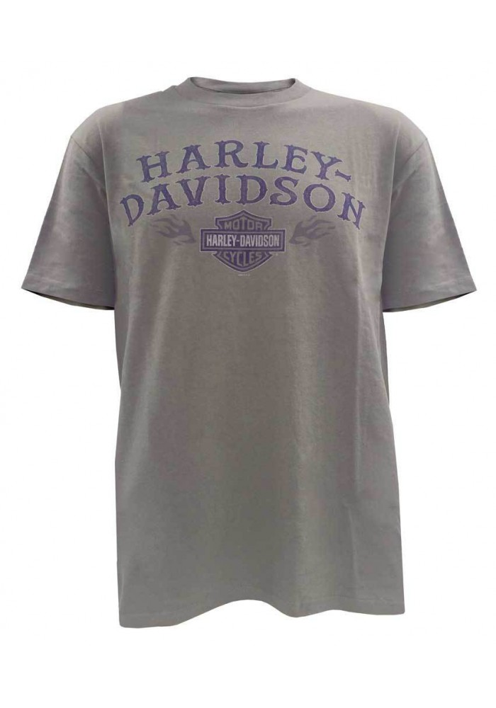 Harley Davidson Homme Stay Maintained Tee Shirt Manches courtes, Walnut 5504-HB5L