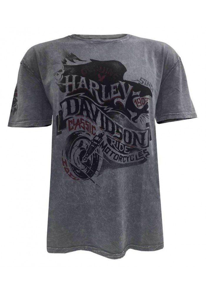 Harley Davidson Homme End of the Road Manches Courtes Washed Tee Shirt 5J31-HB7J