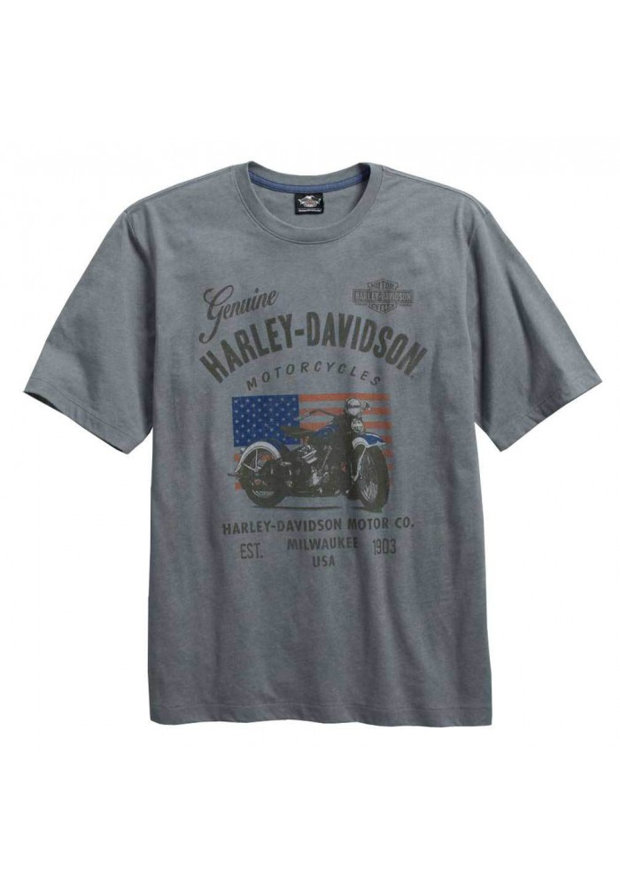 Harley Davidson Homme Model Name T-Shirt Manches Courtes, Gris 96161-16VM