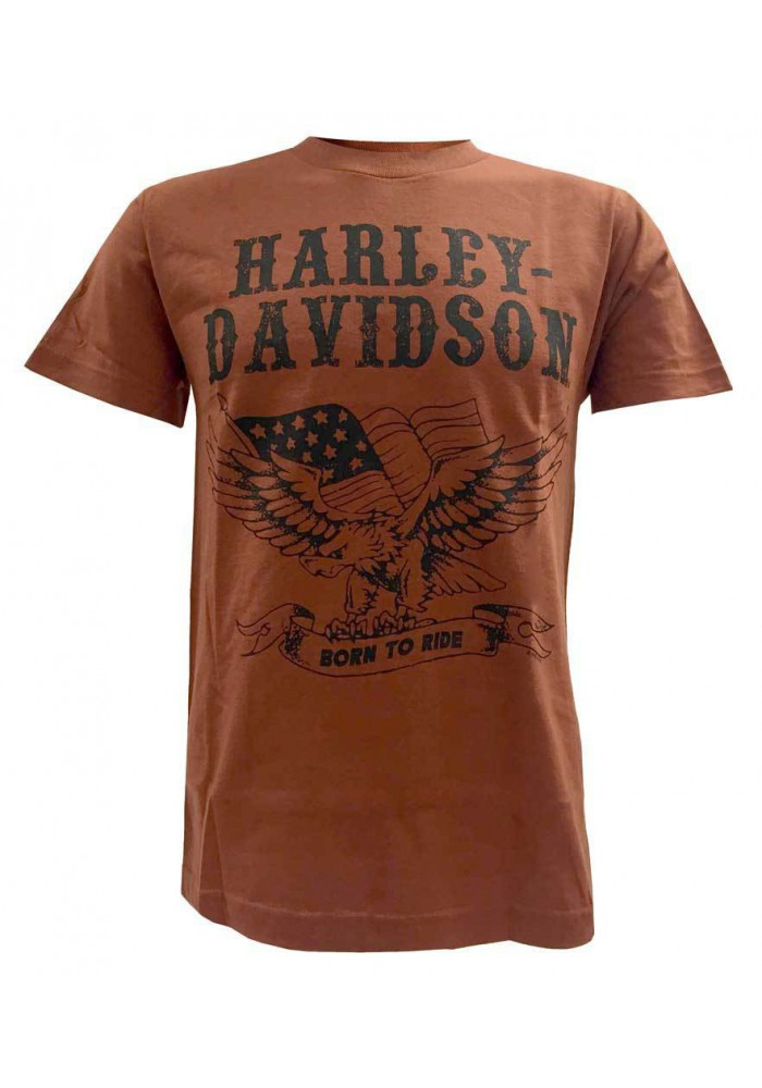 Harley Davidson Homme Born To Ride Eagle Manches Courtes Graphic T-Shirt, Orange