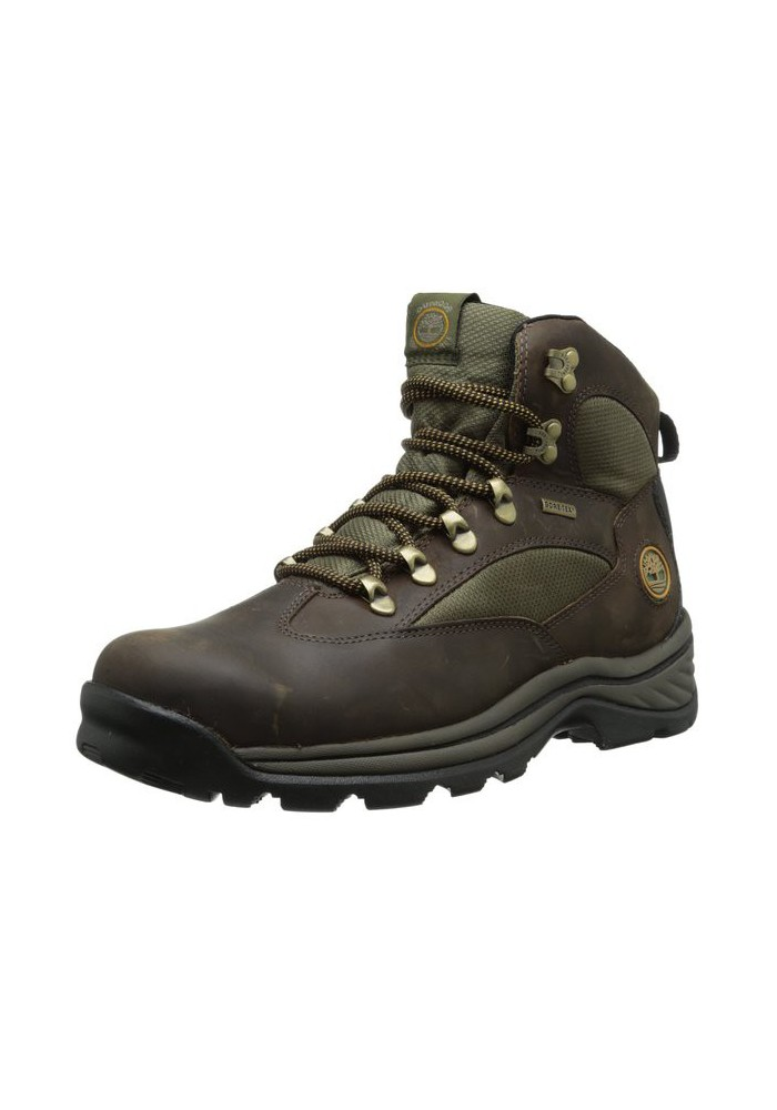 Timberland Chocorua Trail Gore-Tex Mid Bottes Homme