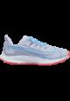 Chaussures Nike Air Zoom Pegasus 36 Hommes V5739-500