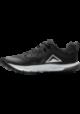 Chaussures de sport Nike Air Zoom Wildhorse 5 Femme Q2223-001