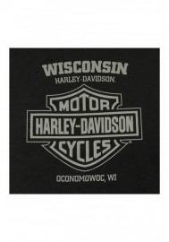 Harley-Davidson Hommes Shade Pin-Up manches courtes col rond Cotton T-Shirt Noir 30292398