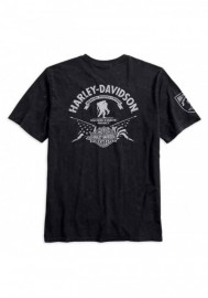 Harley-Davidson Hommes Wounded Warrior Project Stars & Stripes Tee Shirt 99058-17VM