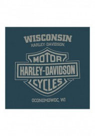 Harley-Davidson Hommes Possessed col rond manches courtes T-Shirt - Antique Harbor 30297422