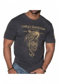 Harley-Davidson Hommes Distressed Snake Poison manches courtes T-Shirt - Charcoal 30292281