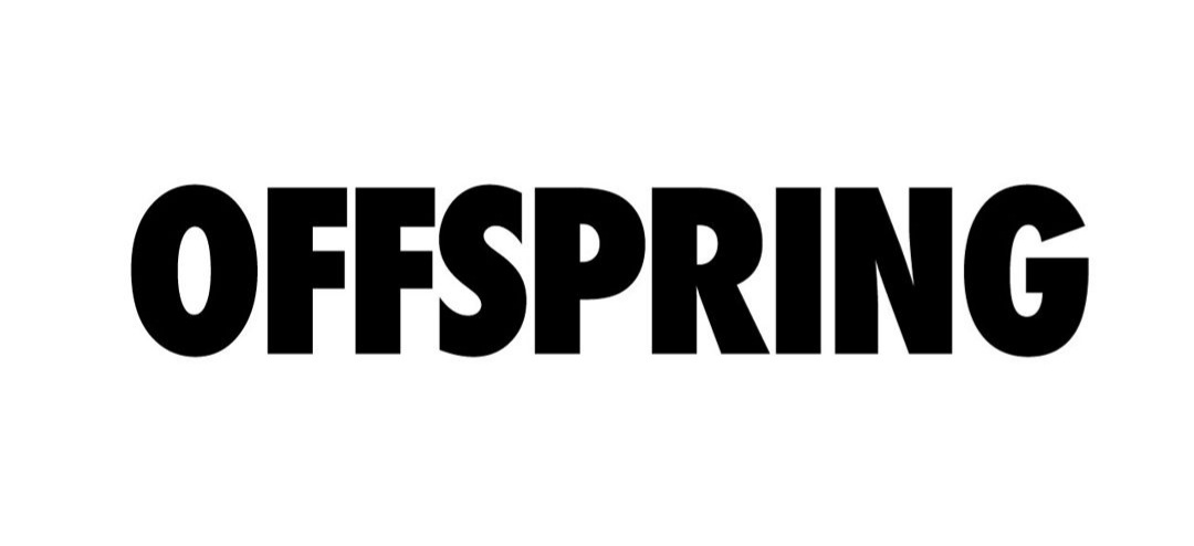 Air Jordan 1 chez Offspring